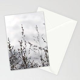 Grey Grasses Stationery Cards