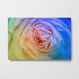Pink Rose Ruffle Rainbow Metal Print