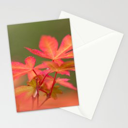 Japanese things 2 61 Stationery Cards