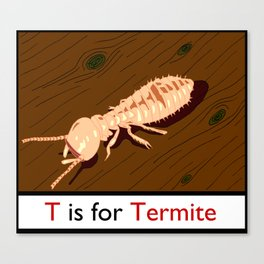 T is for Termite Canvas Print