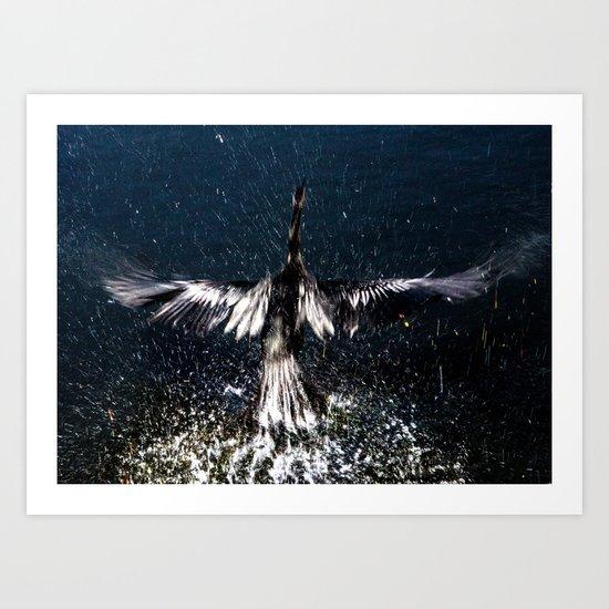 Anhinga Taking Flight Art Print