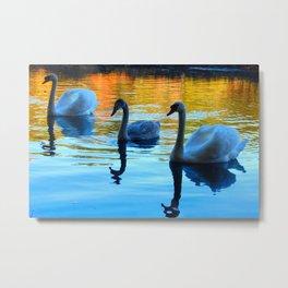 my three swans Metal Print
