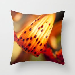 Vibrant Color Throw Pillow