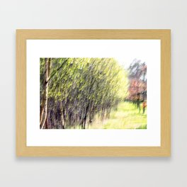 Abstract forest, intentionally blurred by camera shake Framed Art Print