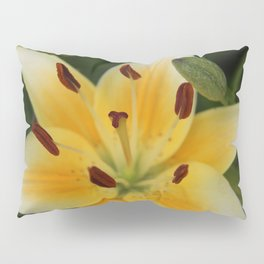 Asiatic Yellow Lily Pillow Sham
