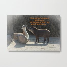 Who I am with you Metal Print