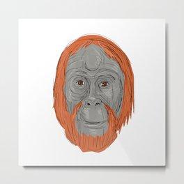Unflanged Male Orangutan Drawing Metal Print
