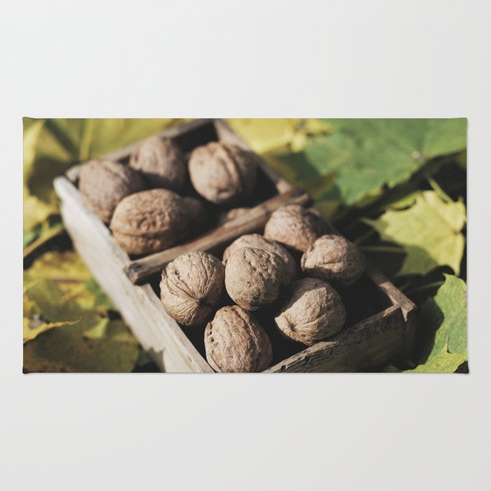 Fall still life italian walnut fruit Rug