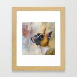 Flashy Fawn Boxer Framed Art Print