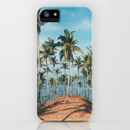 Palm trees 4 iPhone Case