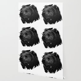 Bear Grizzly Black Wallpaper