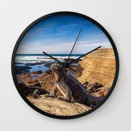 Galapagos beach travel wildlife marine iguanas Wall Clock