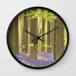 Blooming bluebell forest of Hallerbos in Belgium in morning sunlight Wall Clock