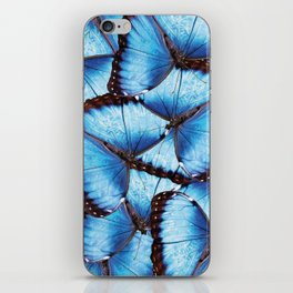 Blue Morpho Butterfly iPhone Skin