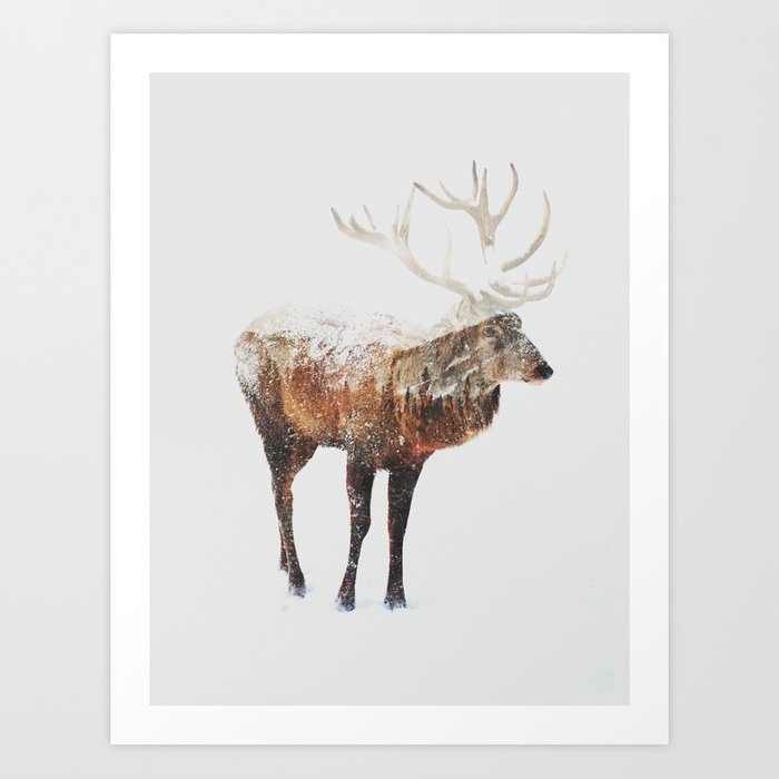 Discover the motif ARCTIC DEER by Andreas Lie as a print at TOPPOSTER