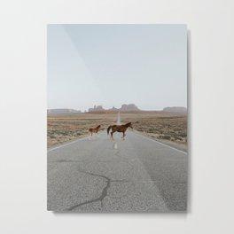 Valley Horses Metal Print