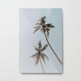 two palm trees Metal Print