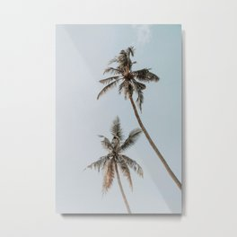 two palm trees Metal Print