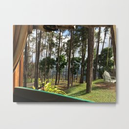 Pine Forest view Metal Print