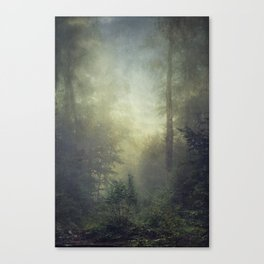 secret domaim Canvas Print