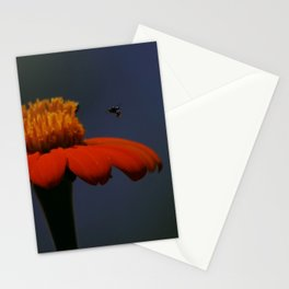 Beespoken Stationery Cards