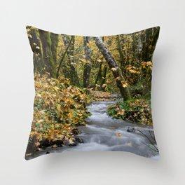 Tillamook In The Fall Throw Pillow