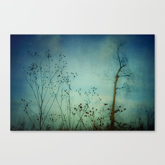 Fleeting Moment - Blue Shades Canvas Print