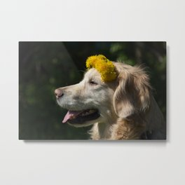 Photo of a golden retriever with flowers Metal Print