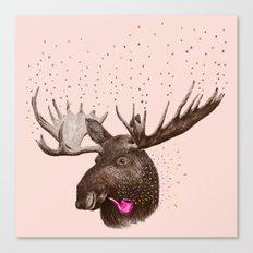 Moose III Canvas Print