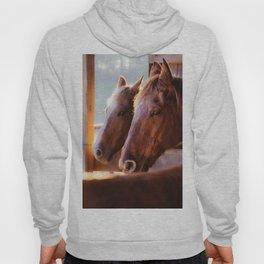 Horse Portrait Hoody