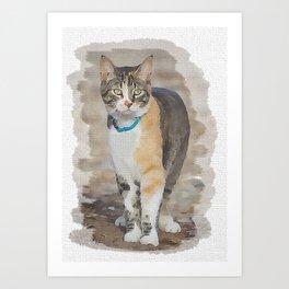 CALICO CAT WATERCOLOR Art Print