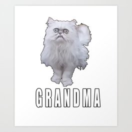 This Stray Cat Looks Like Grandma - Meme Art Print