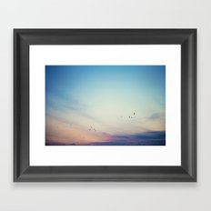 sunset flight Framed Art Print