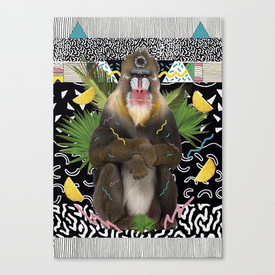 MANDRIL Canvas Print