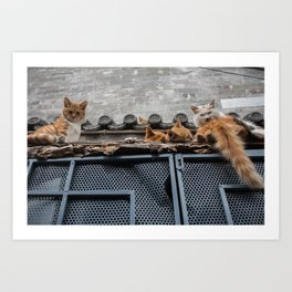 A Bunch of Cats Art Print