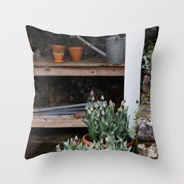 Spring Garden Shed Throw Pillow
