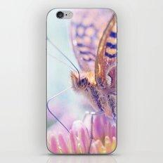 Summer Splendor iPhone & iPod Skin