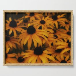 Black-Eyed Susan, yellow autumn daisy Serving Tray