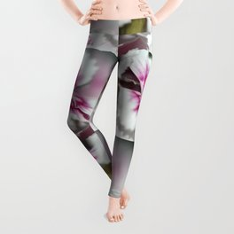 Sweet William from the Super Duplex Bluepoint Mix Leggings