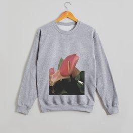 Lillian Crewneck Sweatshirt