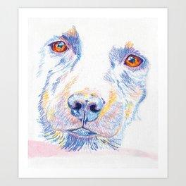 Lotte, the rescue dog Art Print