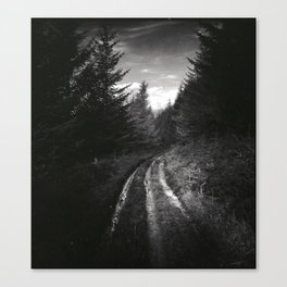 The Track  Canvas Print