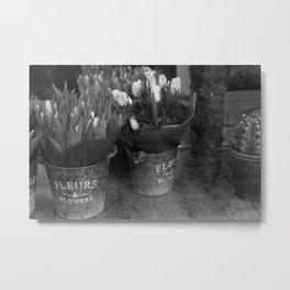 Fleurs & Flowers Metal Print