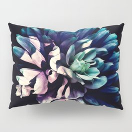 Pink Dahlia In the Last Rays of Sunset Pillow Sham
