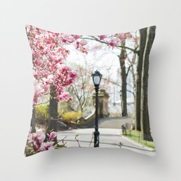 Spring in Central Park Throw Pillow