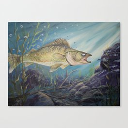 Feeding Time (Walleye) Canvas Print