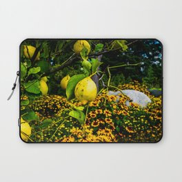 LemonTree Laptop Sleeve