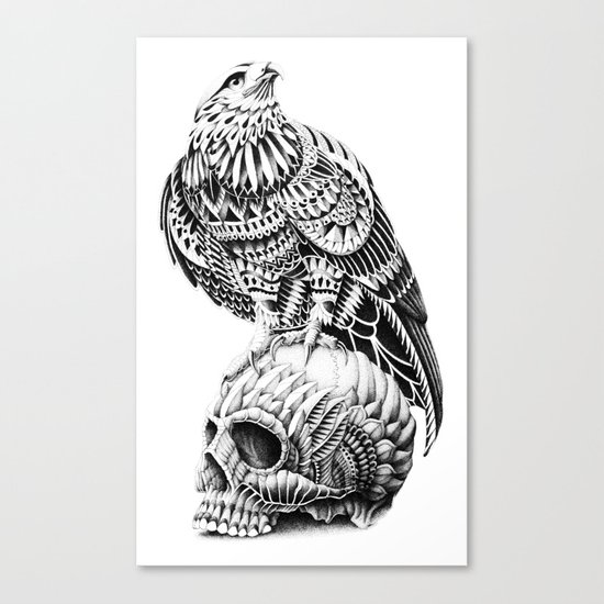 Red-Tail Skull Canvas Print