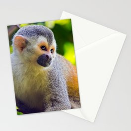 Squirrel monkey - Costa Rica Stationery Cards