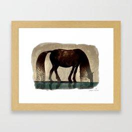 Horse (Kelpie) Framed Art Print